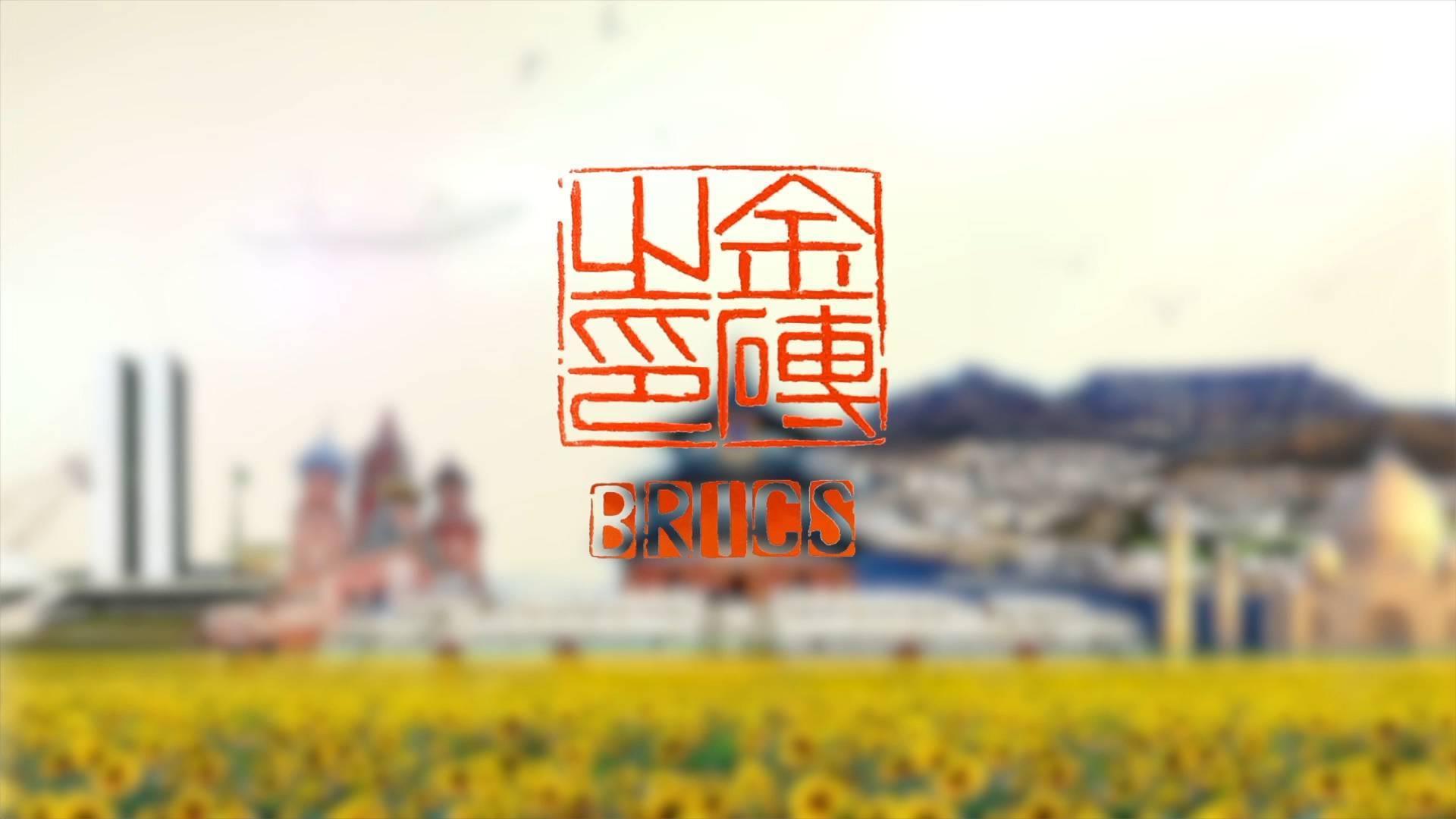 金砖之印(中文版)图片