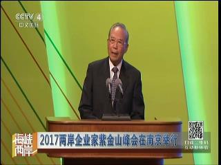 2017两岸企业家紫金山峰会在南京举行图片