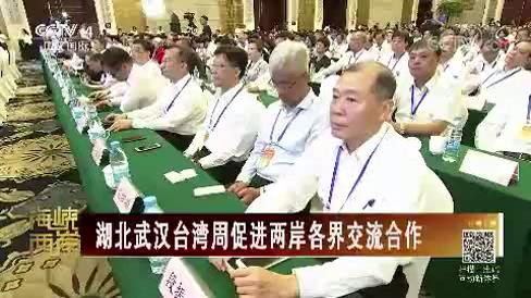 湖北武汉台湾周促进两岸各界交流合作图片