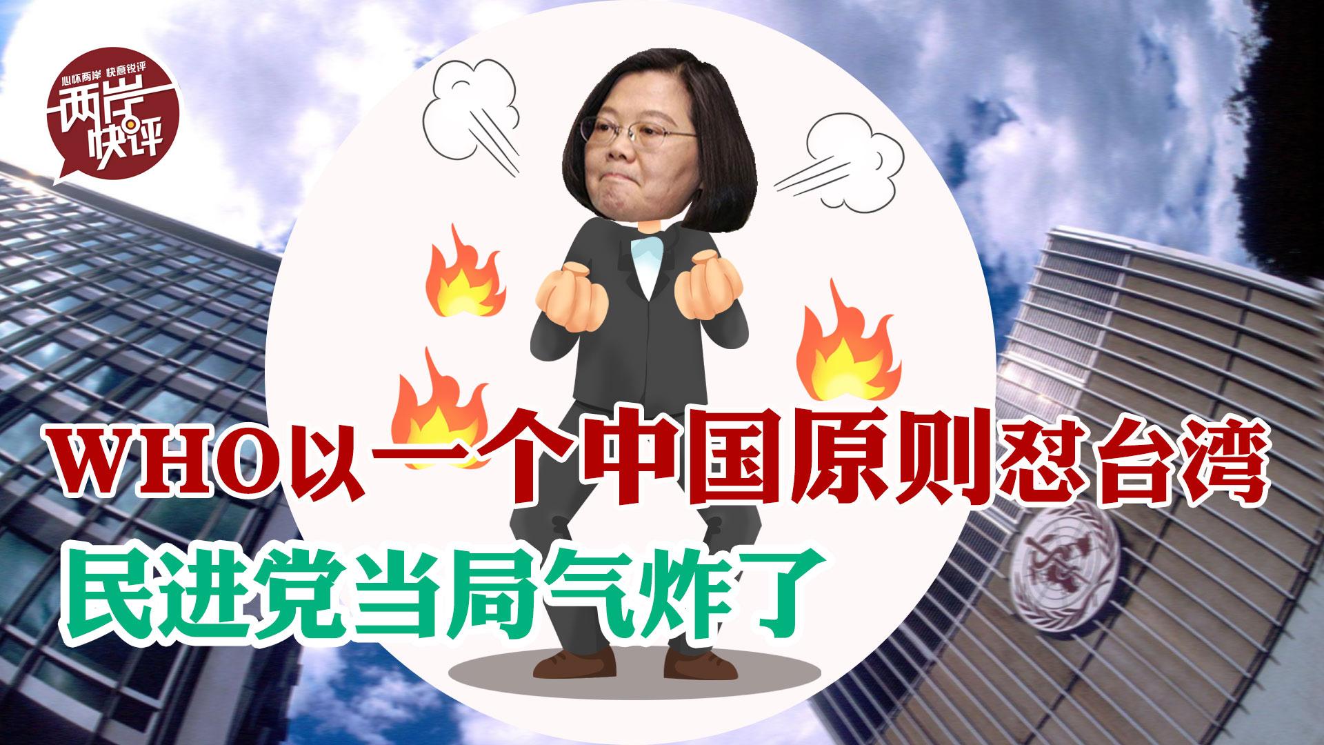 自取其辱!世卫组织再次以一个中国原则回怼,民进党当局气坏了图片