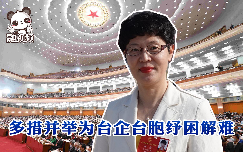 台籍全国人大代表林青:多措并举助力台胞台企复工复产图片
