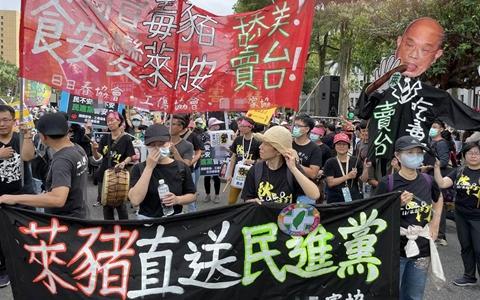 台湾举行30年来最大秋斗游行民众高喊:蔡英文下台!图片