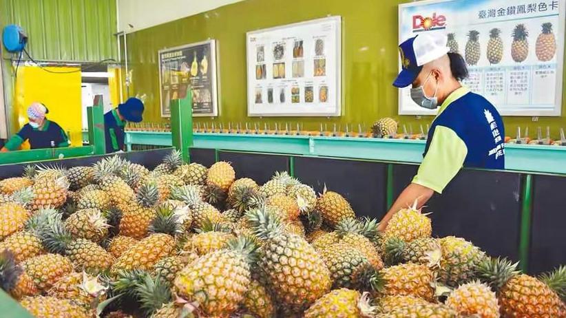国台办:暂停进口台湾地区菠萝是完全合理、必要的