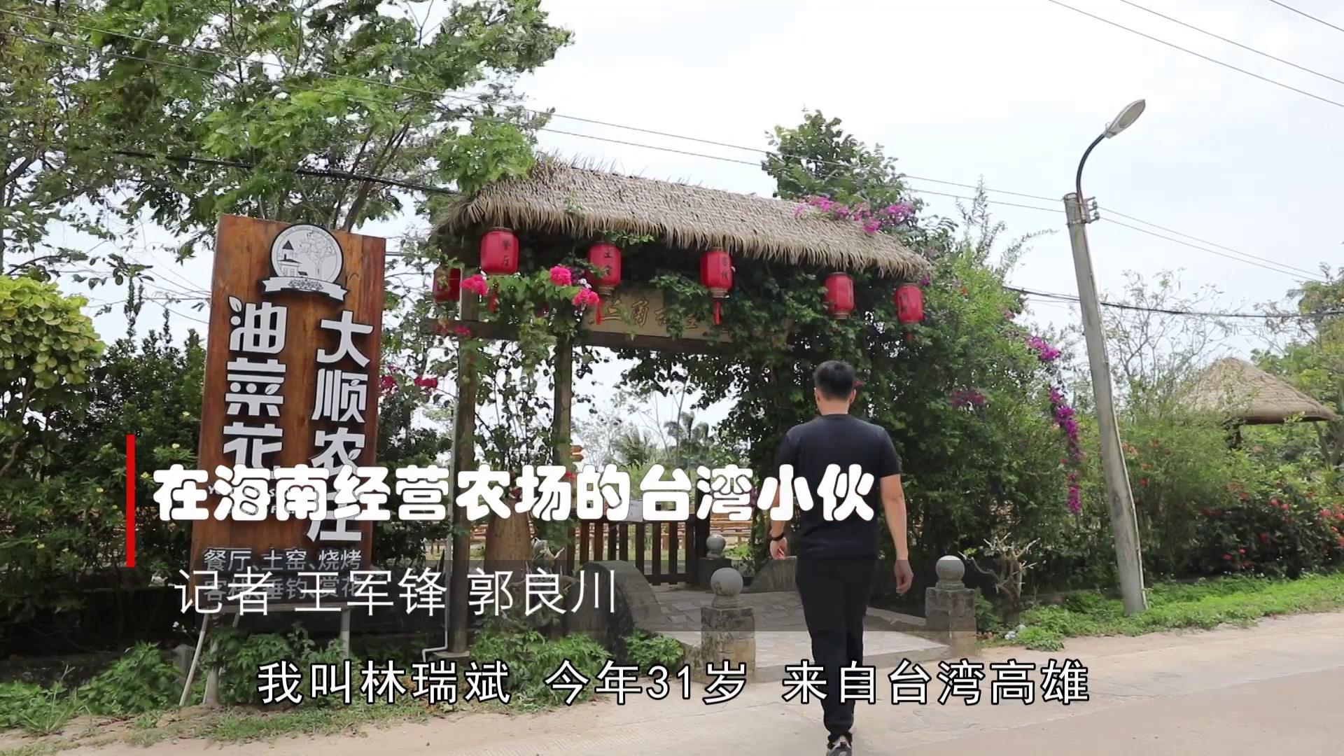 海南青年台商林瑞斌的現代農場轉型試驗图片