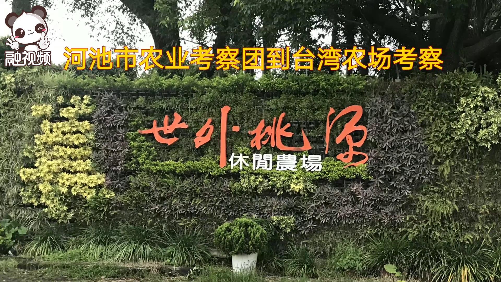 河池市农业考察团到台湾休闲农场考察图片