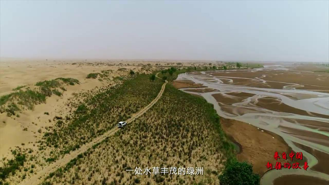 來自中國新疆的故事——沙漠使者圖片