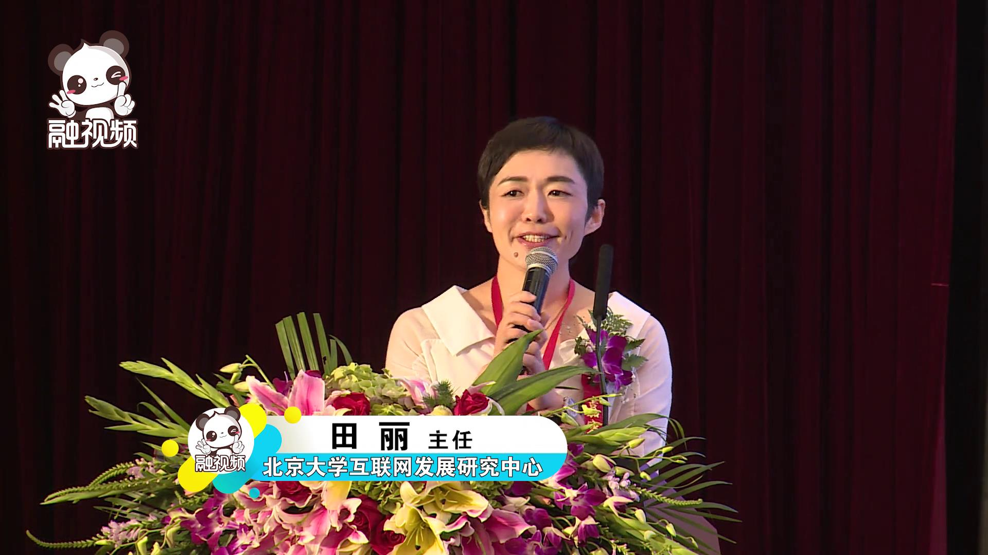 北京大学互联网发展研究中心主任田丽发表题为《网络文化与两岸交流的媒体责任》的演讲图片