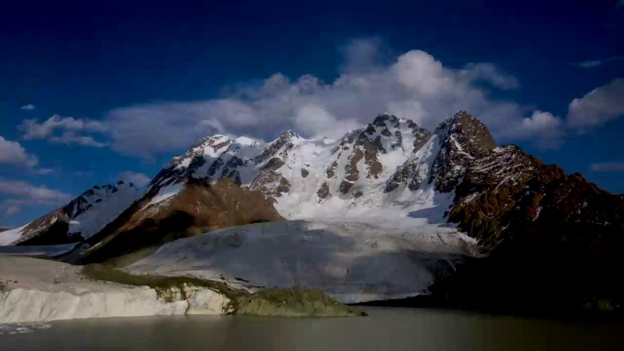 来自中国新疆的故事——白鸟湖卫士图片
