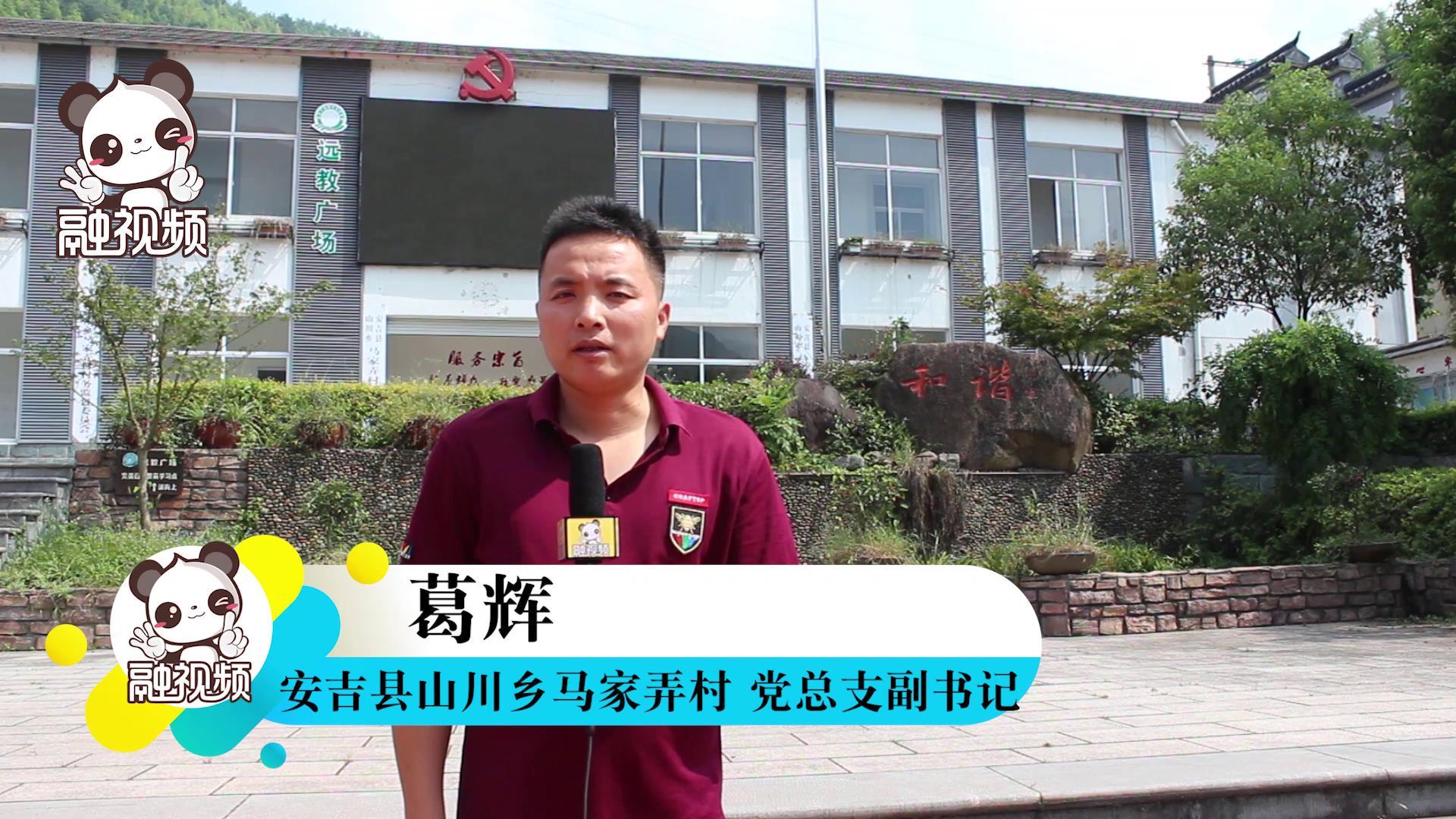 专访安吉县山川乡马家弄村党总支副书记葛辉图片