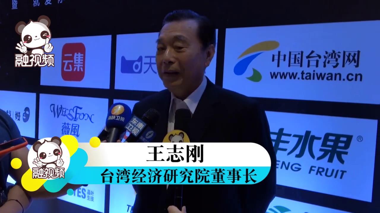 王志刚:网络科技进步促进两岸交流,期待两岸更大经贸交流图片