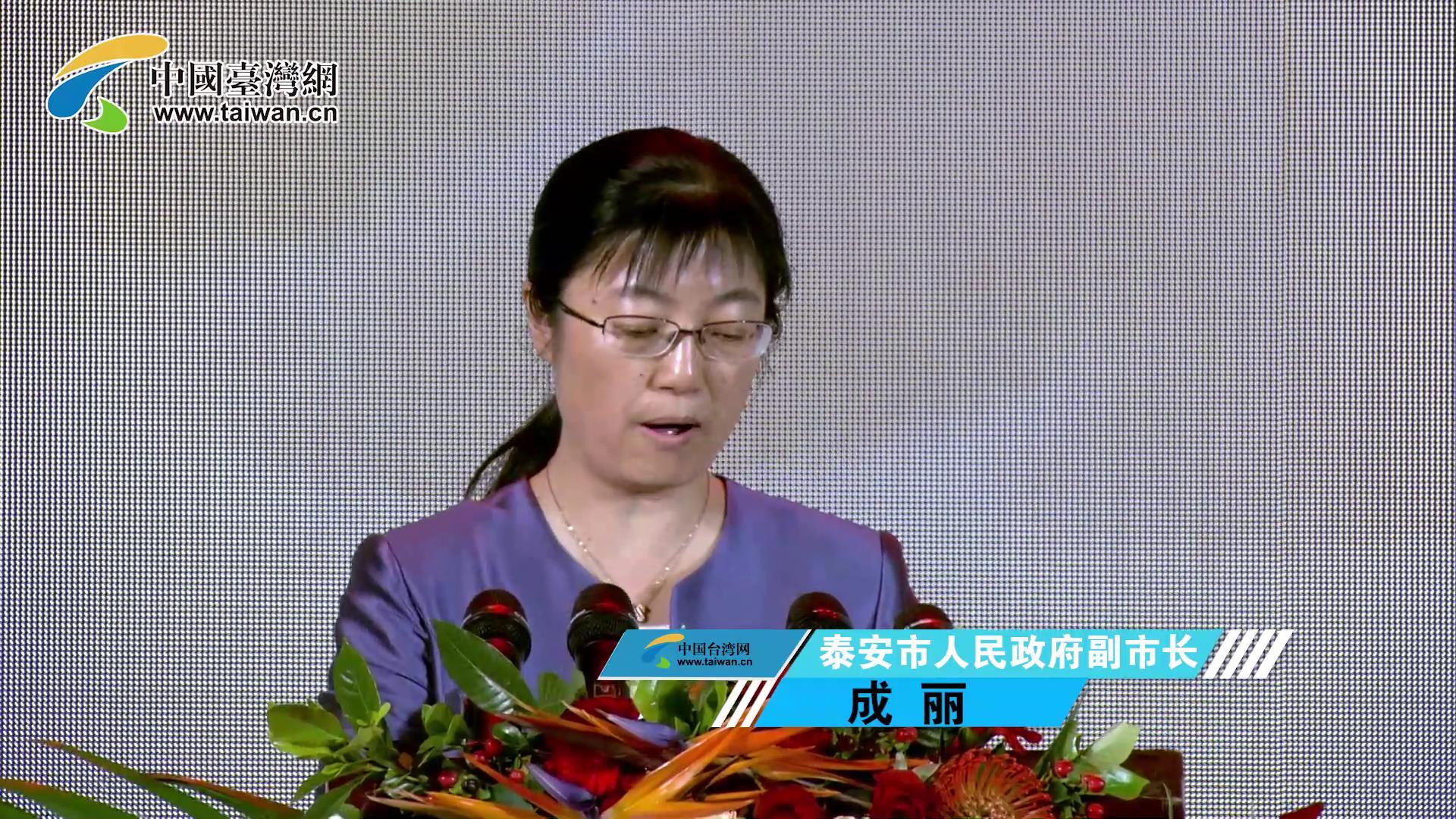 泰安市人民政府副市長 成麗圖片