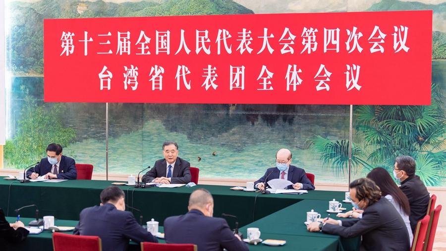 汪洋参加台湾代表团审议图片