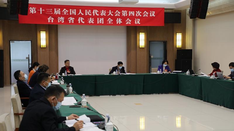 台湾省全国人大代表团继续审议政府工作报告图片